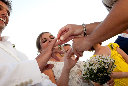 wedding ????? 250