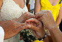wedding ????? 251