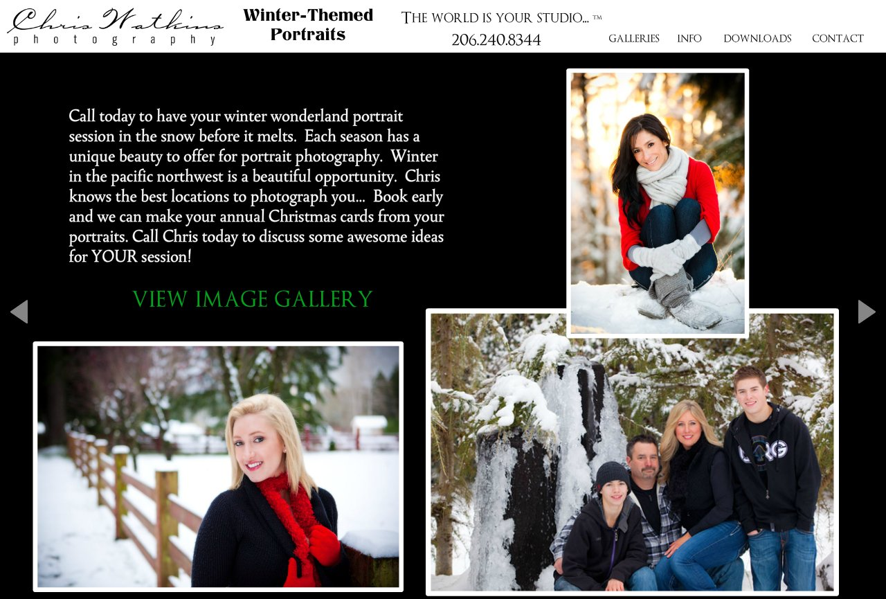 winter & christmas themed portraits