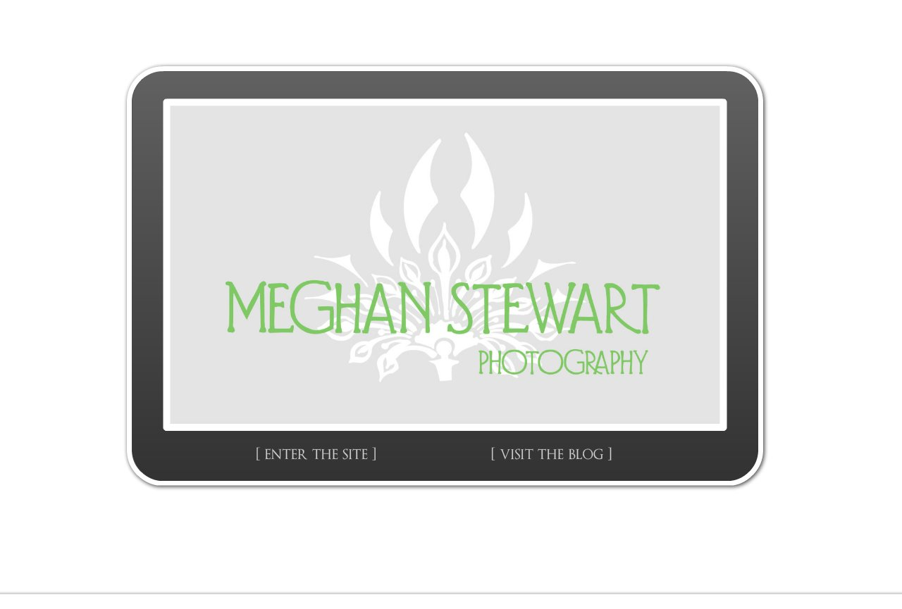 Meghan Stewart Photography - Jacksonville Wedding and Family Photographer