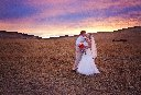 Wheatfield at Sunset Wedding Photo