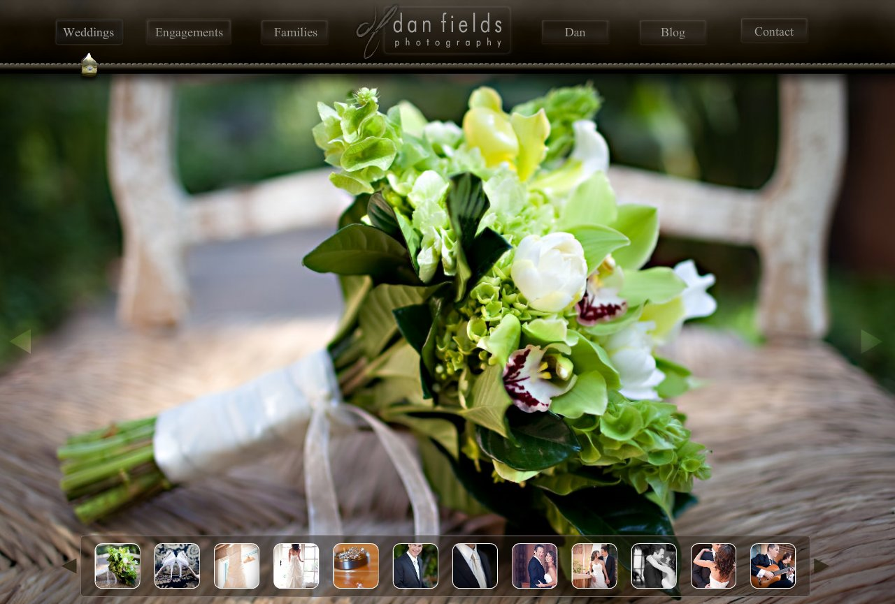 Dan Fields ~ Wedding Photography