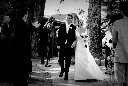 Sonoma County Wedding Photography of the newlyweds