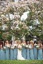 tampa garden club wedding