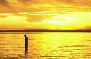 orange sunset copy