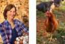 Chicken_Farmer