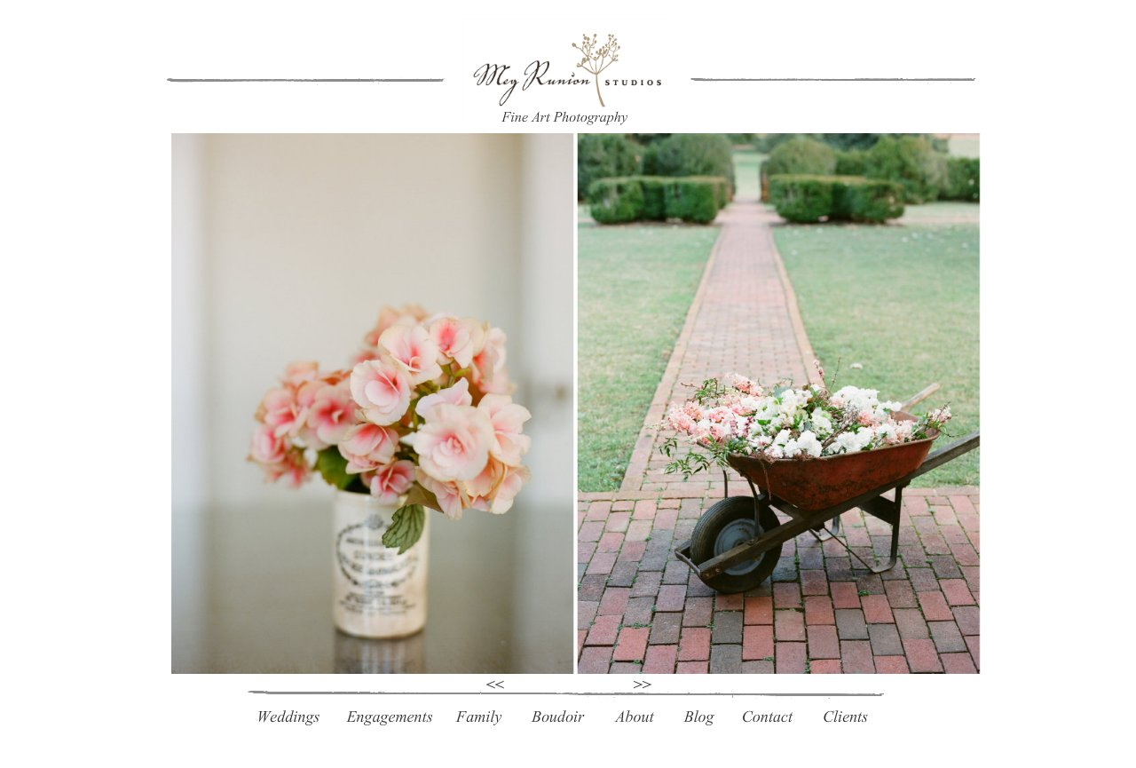 Wedding-Portrait-Photographer-Charlottesville-Virginia
