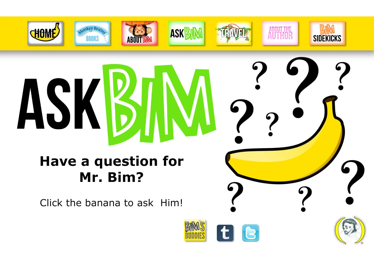 Ask Bim