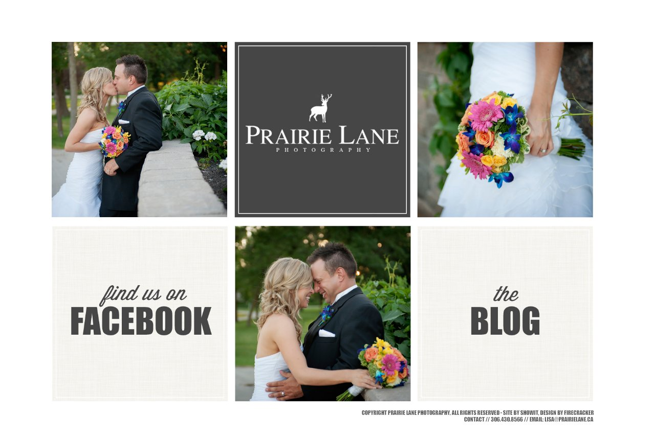 Prairie Lane Photography I Wedding & Lifestyle Photographer I Kindersley & Saskatoon, Saskatchewan and Surrounding Areas I lisa@prairielane.ca I 306.430.8566