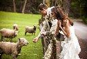 CarleyK_Wedding_0003