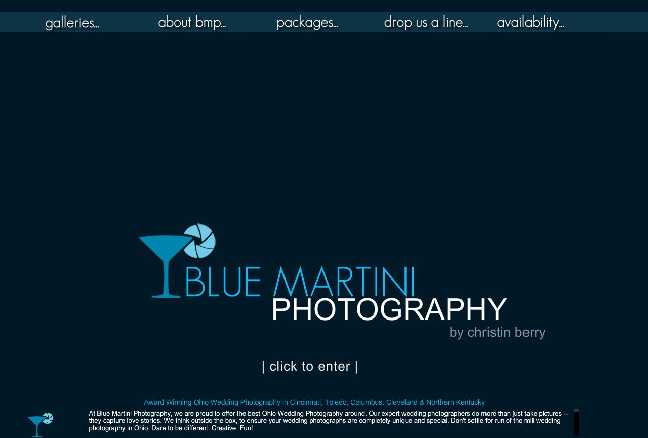 Blue Martini Photography, professional photographers