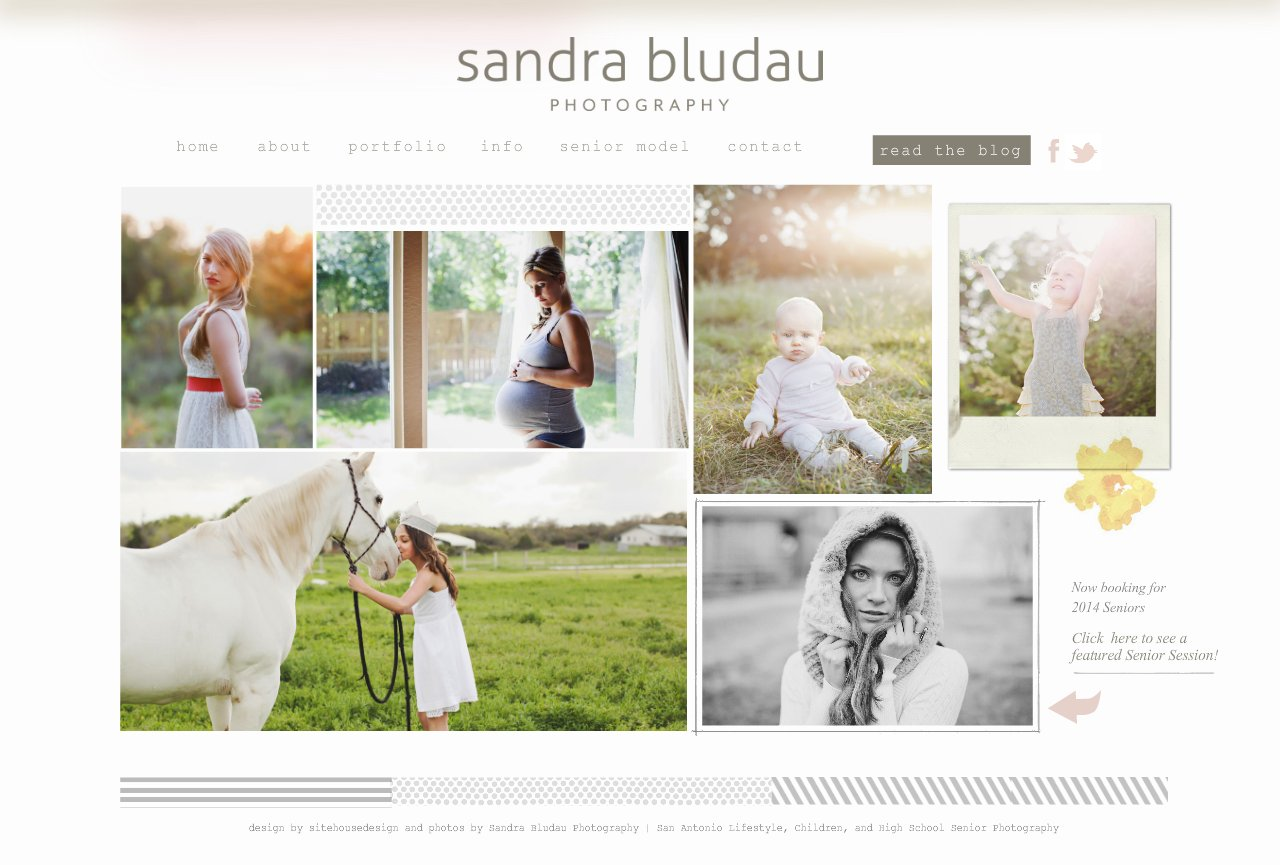 San Antonio Senior and Child Photographer  | Sandra Bludau Photography - Home
