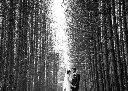Moncton Wedding Photographer Caro Photo 12
