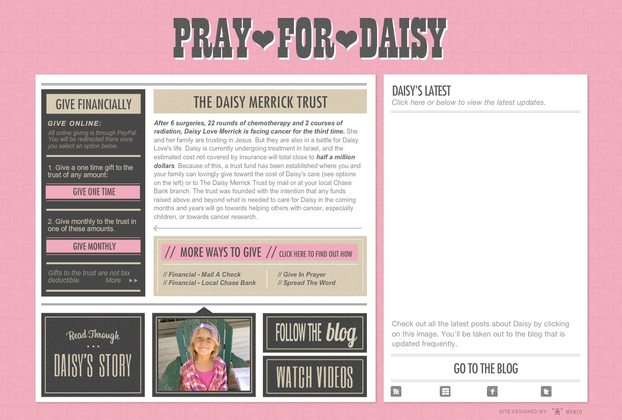 Daisy-Contribute-1