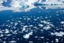 RYALE_Antarctica_D5_051