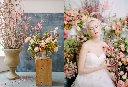 RYALE_Tulipina_Spring_