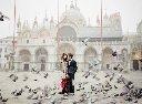 RYALE_Venice_Baroque-001