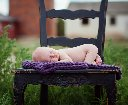 Newborn Baby on Chair in field