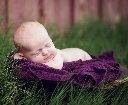 Baby in bowl in grass